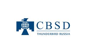 Thunderbird russia - фото 4